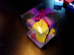 Cutii plastic pentru flori cutii plastic flori Cutii plastic flori cutii plastic orhidee 1035 2 300x225