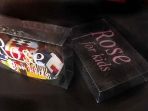 Cutii din plastic cutii plastic genti Cutii plastic genti cutii plastic pentru genti cadouri 1577 2 300x225
