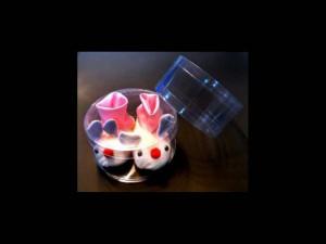 Ambalaje pentru botosei cilindri botosei Cilindri botosei ambalaje plastic botosei copii 455 1