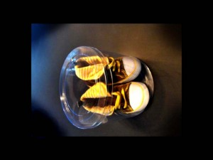 Ambalaje cilindrice pentru botosei