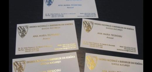 Carti de vizita folio auriu