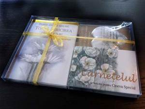 Cutii ambalaje carte cutii plastic Cutii plastic cadou carte cutii cadouri cutii plastic cadou carte 1281 1