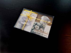 Cutii din plastic cutii plastic Cutii plastic cadou carte cutii cadouri cutii plastic cadou carte 1281 2