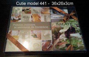 Cutii ambalaj carte cutii ambalaj carte Cutii ambalaj carte cutii plastic ambalaj carte 1227 1