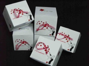 Invitatii in forma de cub invitatii nunta forma cub Invitatii nunta forma cub invitatii nunta 268 8