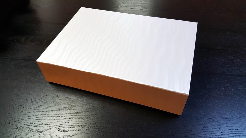 Cutie rigida pentru pantofi - 2