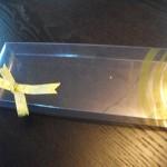 cutii plastic personalizate panglica Cutii plastic personalizate panglica DSCF1185 150x150
