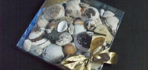 cutii cadouri cutii cadouri Cutii cadouri cutie plastic decoratiuni 730 1 520x245