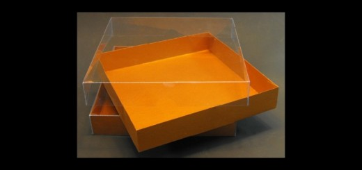 cutii carton cosmetice cutii carton cosmetice Cutii carton cosmetice cutii carton cosmetice 174 2 520x245