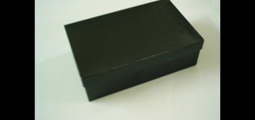 cutii pantofi cutii pantofi Cutii pantofi cutii carton pantofi 175 1 520x245