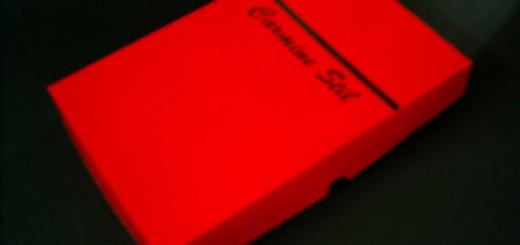 cutii carton personalizate cutii carton personalizate Cutii carton personalizate cutii carton serigrafiate 170 1 520x245