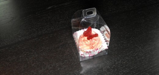 cutii figurine sapun cupcakes cutii figurine sapun cupcakes Cutii figurine sapun cupcakes cutii plastic figurine sapun cupcakes 1242 1 520x245