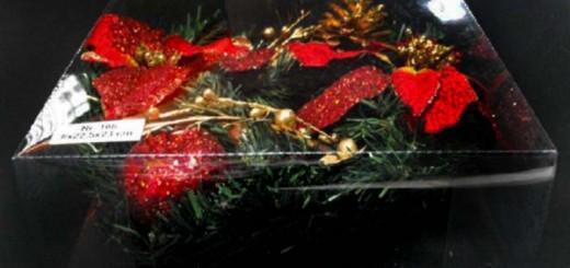 cutii plastic ornamente Craciun