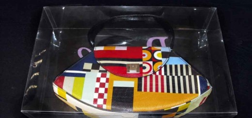 cutii plastic genti cutii plastic genti Cutii plastic genti cutii plastic pentru genti cadouri 1577 3 520x245