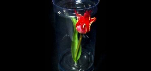 Cilindri pentru flori