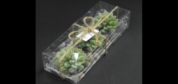cutii lumanarele cactus