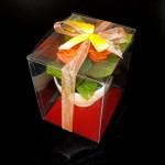 ambalaj plastic ghiveci flori Ambalaj plastic ghiveci flori DSCF1210 150x150
