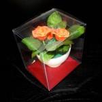 ambalaj plastic ghiveci flori Ambalaj plastic ghiveci flori DSCF1211 150x150