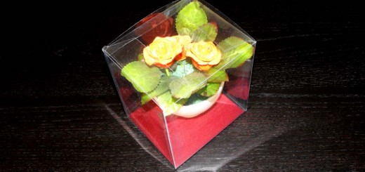 ambalaj plastic ghiveci flori