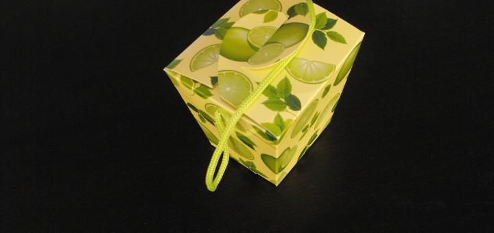 cutii ambalaj carton