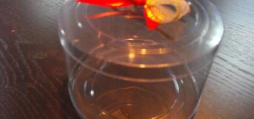 cilindri plastic transparente cilindri plastic transparente Cilindri plastic transparente DSCF12451 520x245
