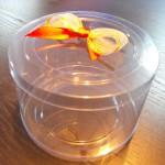 cilindri plastic transparente Cilindri plastic transparente DSCF12471 150x150