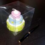 cutii din plastic pentru briose Cutii din plastic pentru briose 197 21 150x150