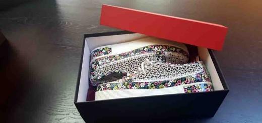 Cutie rigida pentru pantofi
