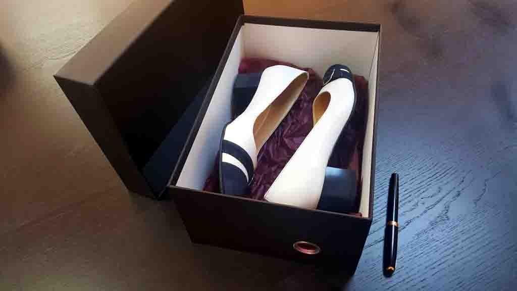 Cutie rigida pentru pantofi eleganti - 2