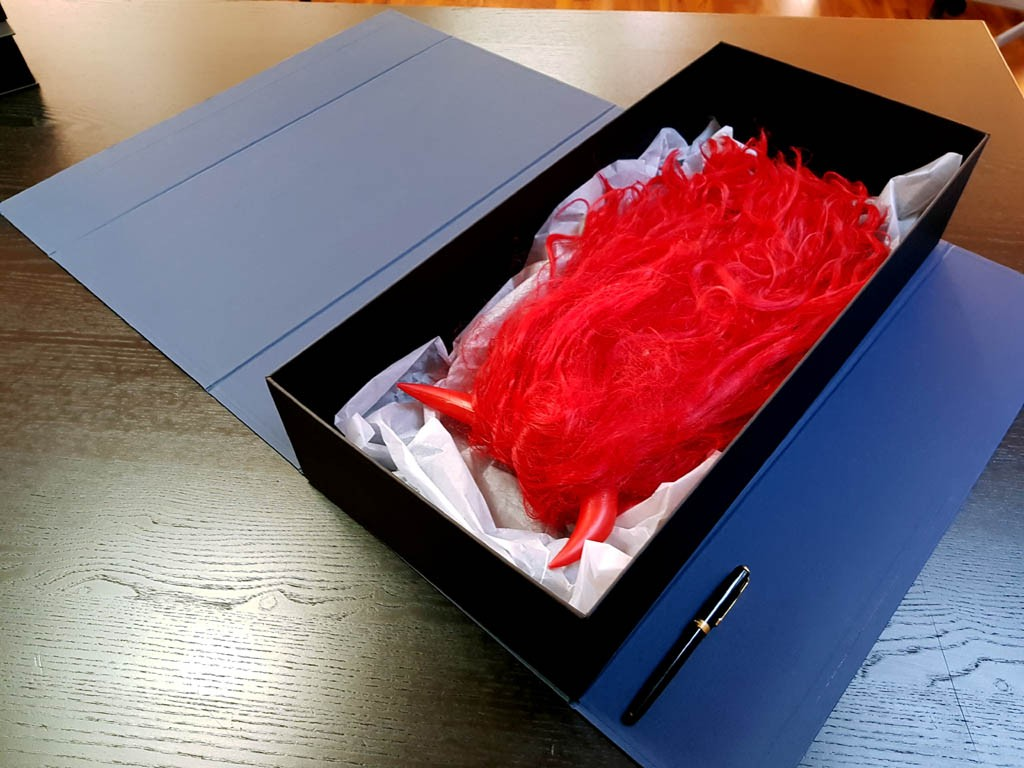 Cutie rigida pentru peruci - 6